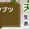 赤ちゃん用洗剤 『ドルチボーレ ナチュラルウォッシュ』が誕生!