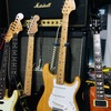 FENDER STRATOCASTR MOD RB74NM-CJ