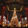 東京🇯🇵ディズニーランド クリスマス