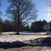 雪どけ中の野外彫刻美術館 @ DeCordova Museum