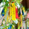 七夕の願い事と豪雨災害支援募金