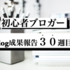 6000PVブロガーのブログ成果報告『30週間(6/13〜6/19)経過』今までしてきたこと。