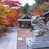 京都・亀岡 - 鍬田神社の紅葉
