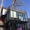 798芸術区内のカフェ、樹上珈琲館。大きな木の上でひと休み