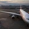 四川航空 3U8085便 成都CTU-成田NRT A330-200 エコノミークラス ANAを完全コピーした飛行機で行く、往復1万5千円のミニスカスッチーフライトはいかに!?