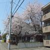 2018.05.01 札幌白石・桜と局めぐり