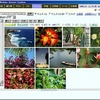 MyHome Portal:画像&動画ビューワ紹介