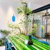 【ブルーボトルコーヒー木屋町】立誠ガーデンビューリック一階🌸桜の見えるBlue Bottle Coffee ☕️