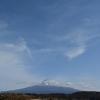 3月1日から12日の富士山・白木蓮