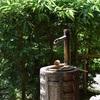 「水琴窟」の音色が美しい鎌倉・浄妙寺、石窯ガーデンテラスのアナベル。