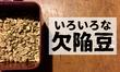 【コーヒー】欠陥豆の種類と特徴をまとめてみた。