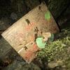 貴船神社にあった藁人形を探しに行ったら怪文書を見つけたレポート