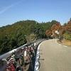 11/22日 SANUKI MAUNTAIN CYCLING /100km/1200m