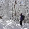 【関西】高見山・霧氷バスツアーのお誘いby荻野なずな