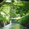 そうだ船で京都に行こう。びわ湖疏水船で行く京都
