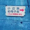 熊野古道 小辺路を2泊3日で歩いた(2日目編:H28.3.26)