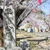 見晴らし最高!小高い丘の桜の名所【早島公園】