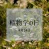 4月24日『植物の日』雑草という名の植物はない
