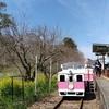 こんな時こそ『旅気分』♪♪♪ 神住まう町【宮崎・高千穂】 予想を遥かに超えたアトラクション! 『あまてらす鉄道』でメルヘン体験♬