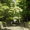 夏の日差しの大原野神社へ初めて行ってみた@2020