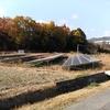 他人の太陽光発電所の土地ですが、草刈りを行うことになりました