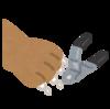 猫用爪切りの種類の多さにビックリ!爪切りの種類と種類別オススメ