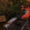 恵庭市 夕闇のラルマナイの滝(秋)
