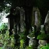 雨の降ってないあいだにコウシンさまを訪ねた  豊後高田市 真玉(またま)にある庚申塔