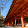 冬の晴れた日に奈良を歩く 春日大社まで
