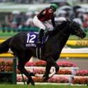 maruthi_horseのブログ