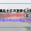 【東海道五十三次を歩く!8日目】大井川の男たちと小夜の中山の夜泣き石