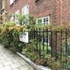 【ロンドン】立体感のある庭