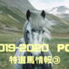 POG 2019-2020シーズン  リーマンの攻略日記③  〜特選馬情報!その3〜