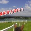 吉備高原で馬に乗る!【岡山乗馬倶楽部】