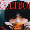 【REVIEW】Mom『21st Century Cultboi Ride a Sk8board』(2020)