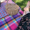 毎日がピクニック日和