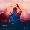 Avicii - Fade Into Darkness 歌詞和訳