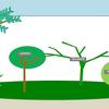 庭の改造:プラン変更と現況