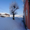 雪に埋もれた2月が終わる