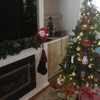 【South Coast】WWOOF24日目。クリスマスイブ!