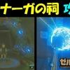 【ゼルダの伝説BotW】 ヤ・ナーガの祠 攻略 【ゼルダの伝説ブレスオブザワイルド】