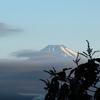 今朝の富士山