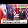 【悲報】TPP11署名へ!日本「アメリカも復帰を!」