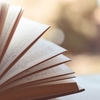 Kindle Unlimitedは優秀なWeb図書館か?時間泥棒か?