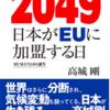 期待以上の面白さ!!高城剛「2049 日本がEUに加盟する日 HUMAN3.0の誕生」を読んでみて感想。