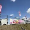 「マダム倶楽部」活動報告 桜の季節、佐賀は「さが桜マラソン」開催♪ 3月19日