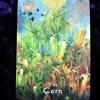 今日のカード The Corn