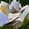 Prime ReadingとKindle Unlimitedを併用し、同時に20冊読む方法