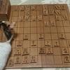 将棋の上達方法(初心者向け)③