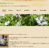 MacのためのWebサイト(日本語ではホームページ)作成アプリSandvoxを使ってみました(その2)